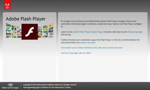 Der Stein des Anstoßes: Adobe Flash Player